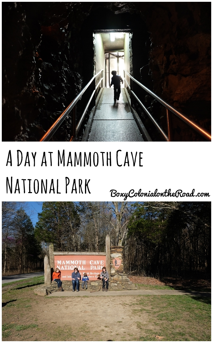 Spending the day at Mammoth Cave National Park with kids: Frozen Niagara and Domes and Dripstones tours