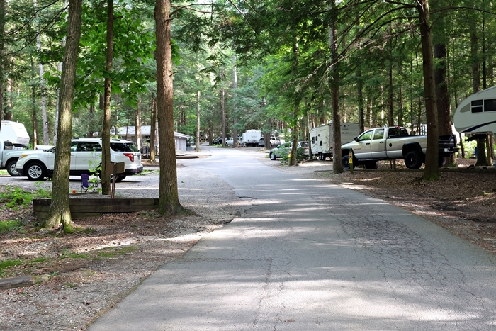 vogel state park campground