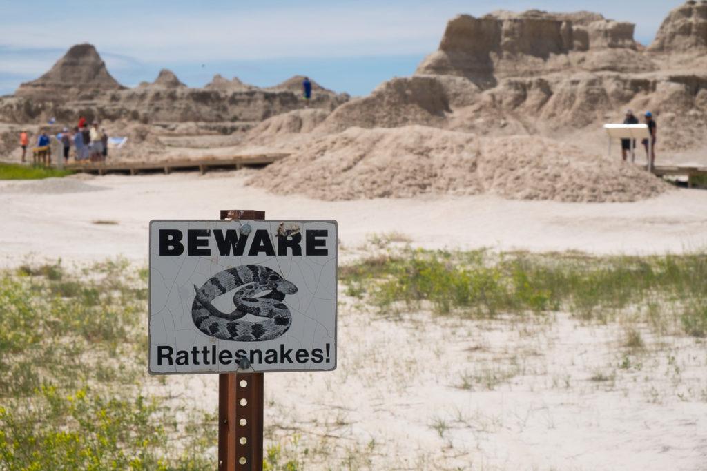 beware rattlesnakes sign, badlands