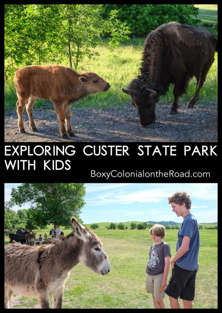 Best things to do in Custer State Park, in the Black Hills of South Dakota, with kids