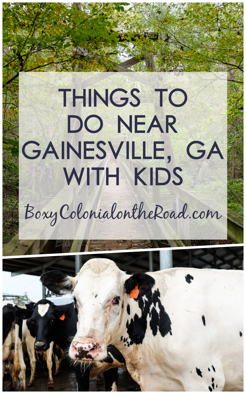 Best things to do in and near Gainesville, GA with kids