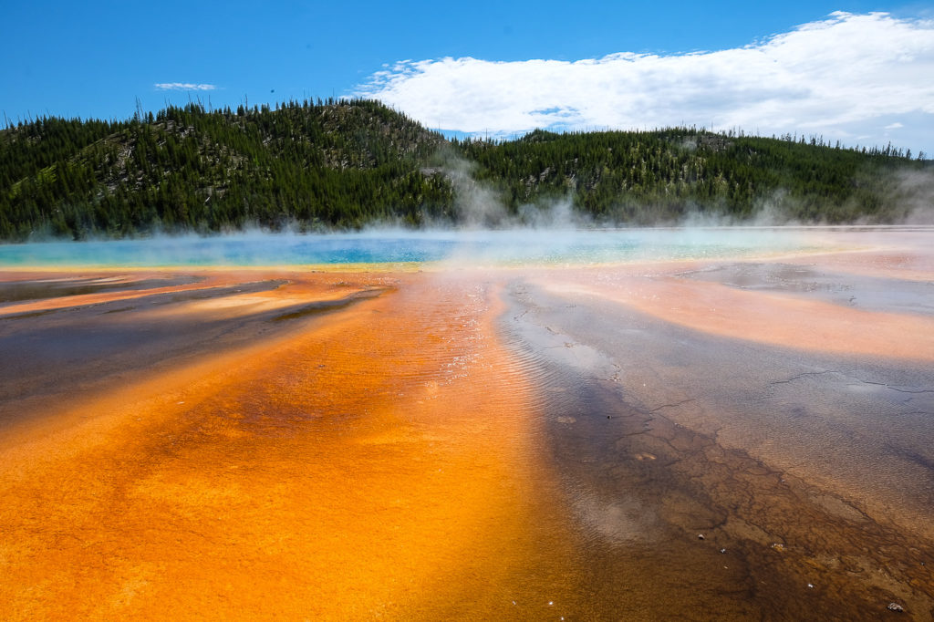 Touring Yellowstone, Part 2: Yellowstone West (not West Yellowstone. That's another post)