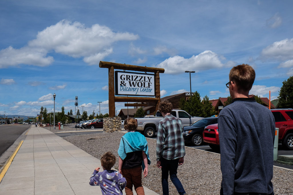 visiting the Grizzly and Wolf Discovery Center in West Yellowstone