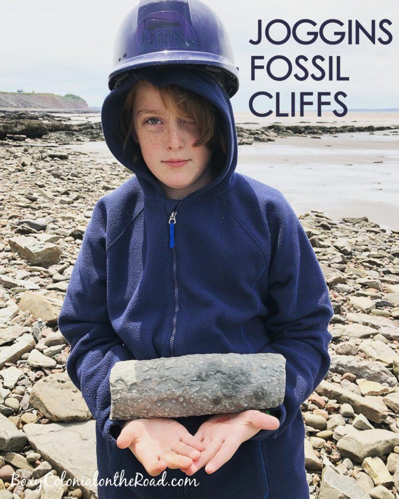 Visiting Joggins Fossil Cliffs In Nova Scotia An Unesco
